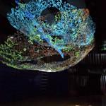 第11回 国際アルテ・ラグーナ賞の画像