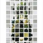 上野隆文 写真展「AKIRA」の画像