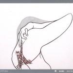 カワヲワタル 展の画像
