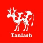 Tanlash vol.1の画像