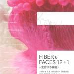 FIBER & FACES 12+1の画像