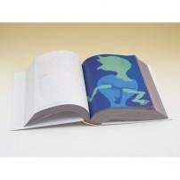 Daisuke Kashiwa 1,000 illustration sources Vol. 4No. 1-500