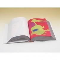 Daisuke Kashiwa 1,000illustration sources Vol. 4No. 1-500