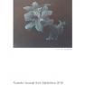 Natsuko Iwasaki Solo Exhibition 2016「#000000 Flower」