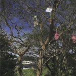 「絵と、 」 vol.4 千葉正也の画像