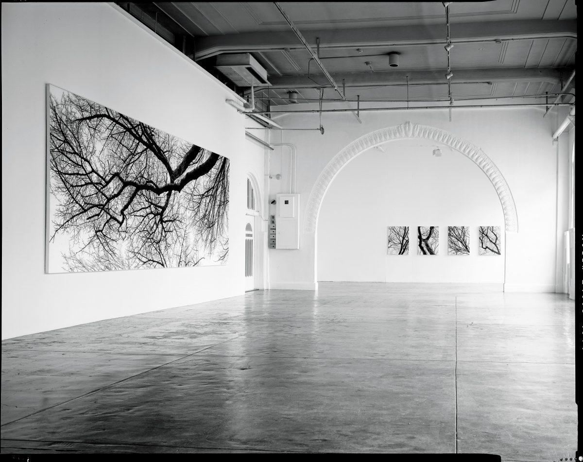 「個展:佐賀町エキジビット・スペース」1999年 / 佐賀町エキジビット・スペース / 撮影:内田芳孝