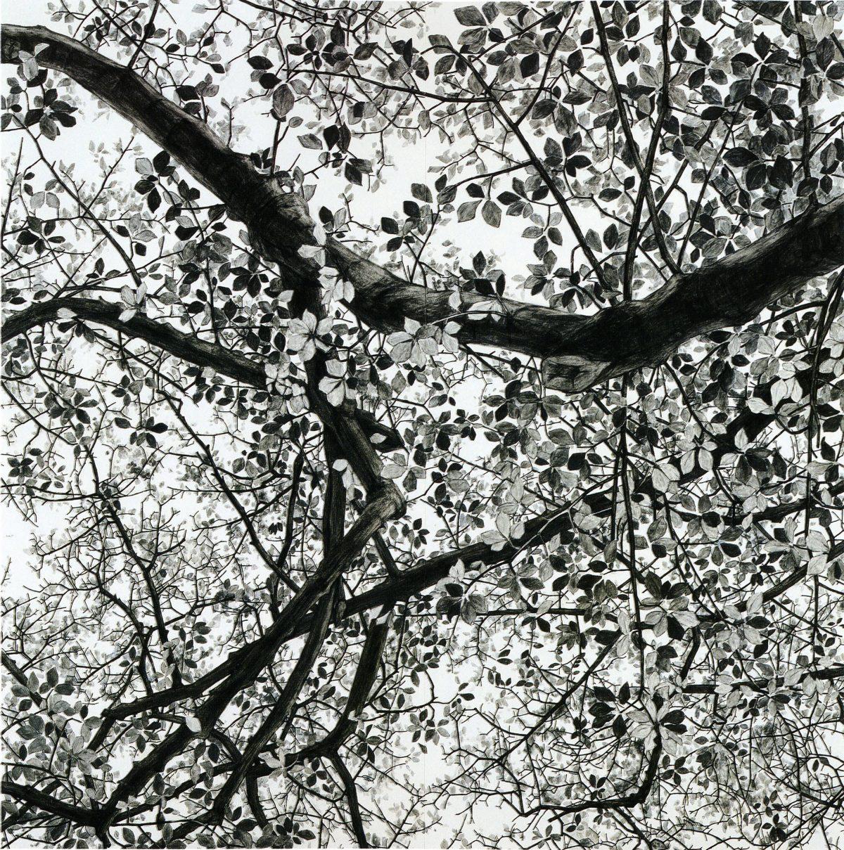 「空との距離 Ⅱ」2002年 / h.240×w.240 cm / 麻紙, 岩絵具 / 新潟県立近代美術館・万代島美術館蔵 / 撮影:内田芳孝