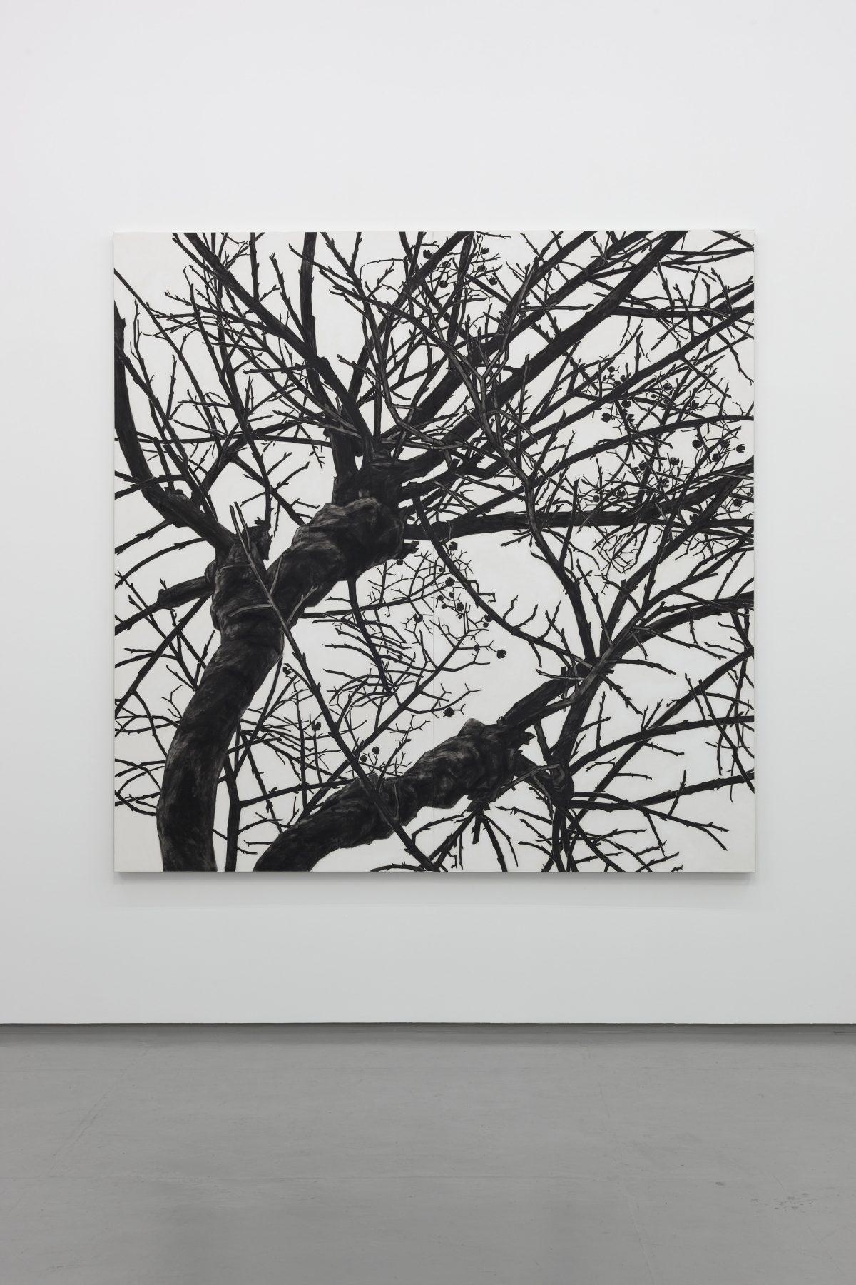「空との距離Ⅺ」2013年 / 240×240cm / 麻紙、岩絵具 / 撮影:渡邉郁弘