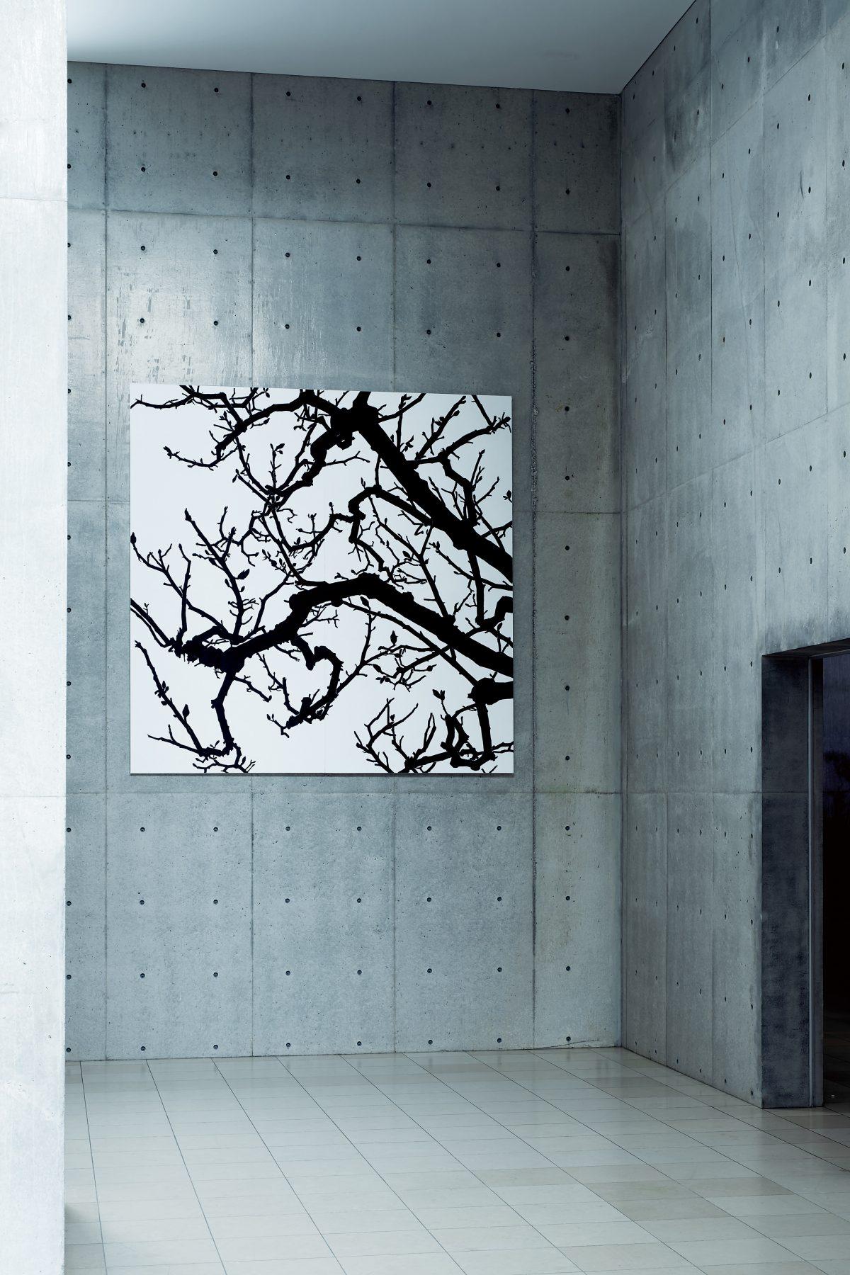 個展「空と樹と」2017年 / ヴァンジ彫刻庭園美術館 / 撮影:髙橋健治
